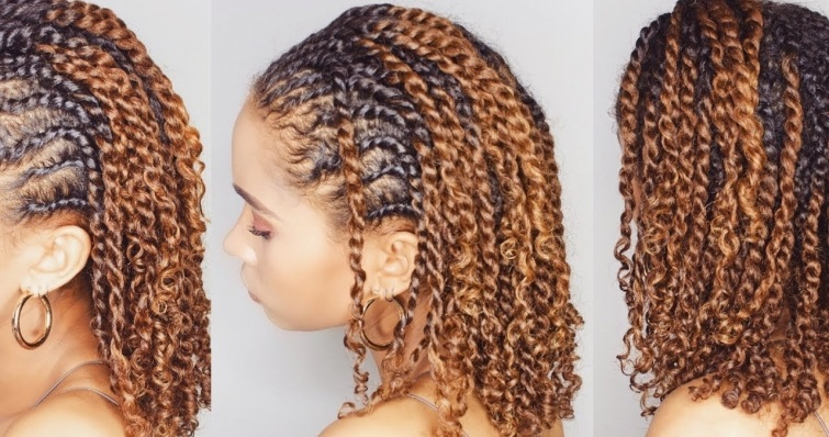 Protective Style For Natural Hair3
